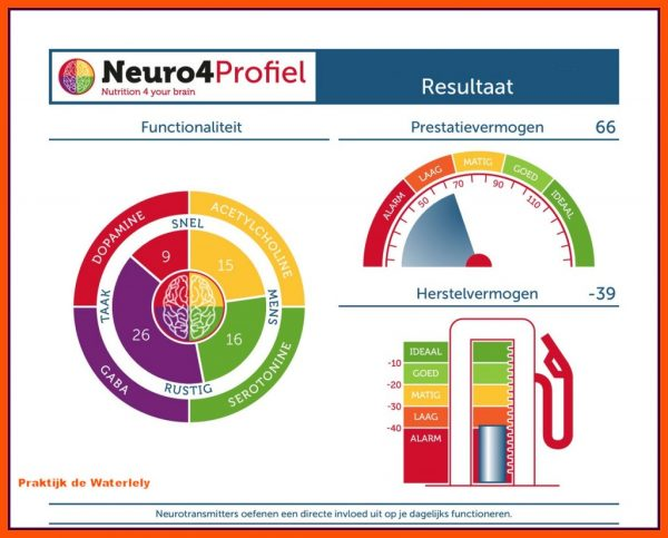 Neurotransmitterstest