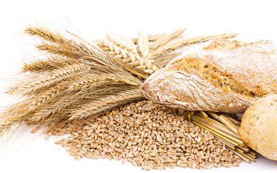Ben jij gevoelig voor gluten? Gluten zijn eiwitten die in de meeste graansoorten voorkomen