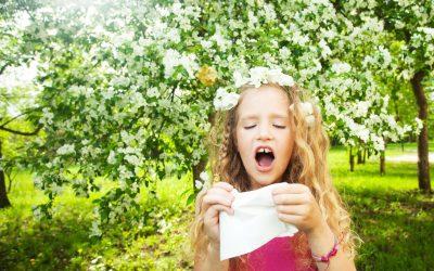 Actuele hooikoortsverwachting voor graspollenallergische patiënten