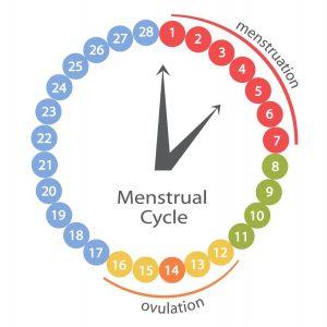 Menstruele cyclus dagen